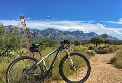 Mountain biking 50 Year Trail Catalina State Park