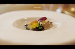 Gillardeau Oysters at Mina Restaurant