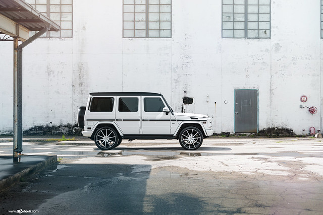 "G550 - Gloss White / Black Accents 24"" F320"