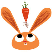 Des ronds dans l'eau, Florent Poisson - Monsieur Lapin - la carotte sauvage