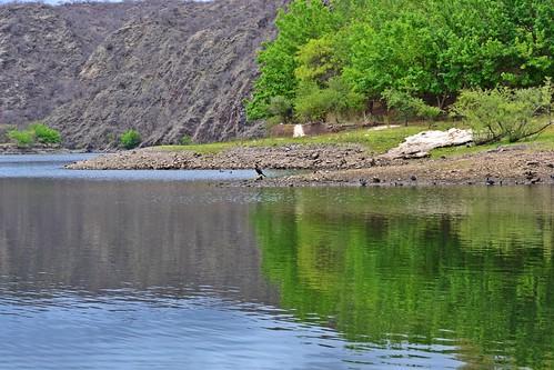 guardian del lago