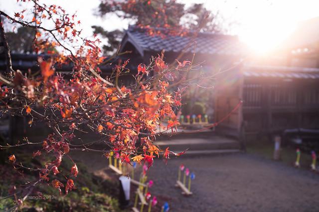 嵐山大覺寺