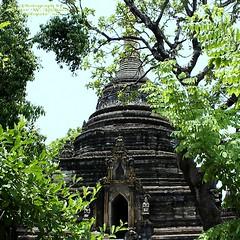 20100516_0304 Wat Pa Pao, วัดป่าเป้า