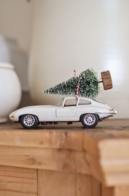 decorazione Natale automobile