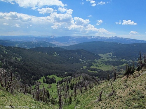 The view part way up the Mount Leidy Trail, Bridger-Teton National Forest, Wyoming