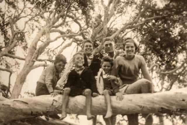 Fun in the Trees ... May 1936