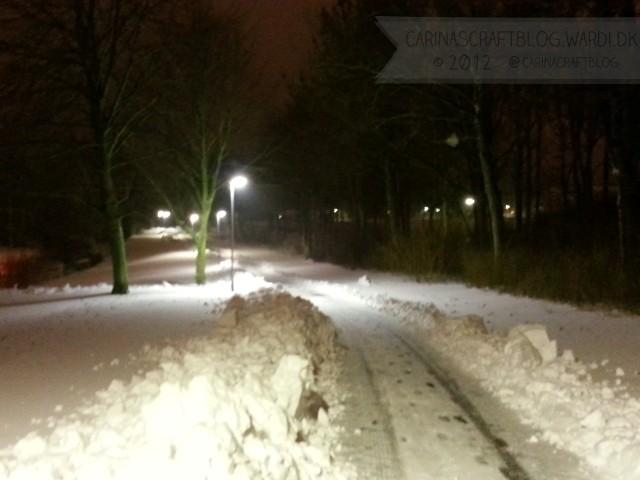Snestorm 23. december 2012