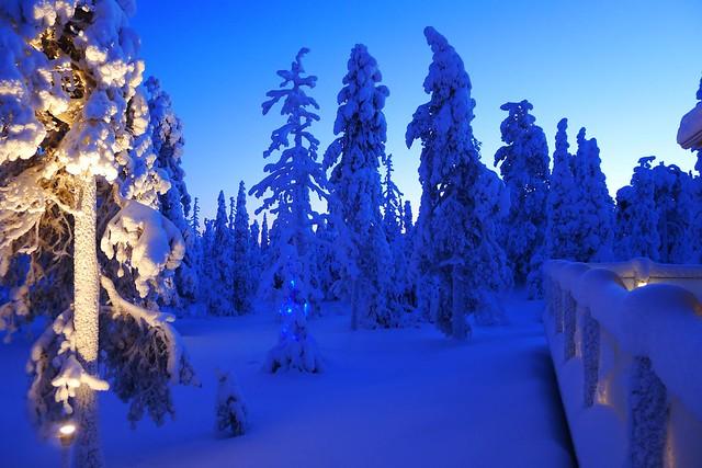 Laponia en invierno: azul