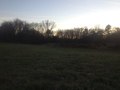 Chattahoochee Pointe Pasture
