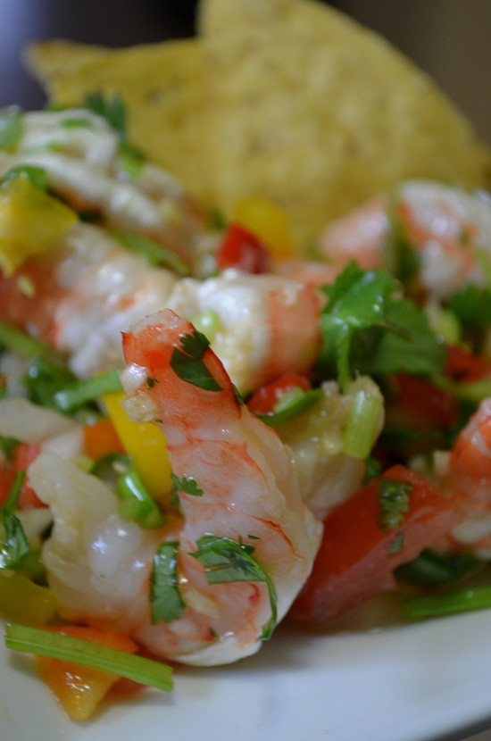 pinterest photo shrimp salad