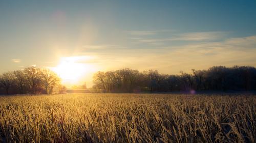 winter sunrise hoarfrost iowa marsh lightroom ryantow clealake canong12