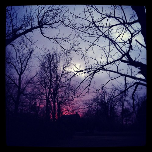 trees sunset sky branches arkansas limbs uploaded:by=flickstagram instagram:photo=547127752896722