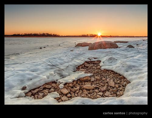 trees winter snow ice sunrise finland helsinki rocks swamp arabia fields talvi arabianranta bolders canon5dmarkiii grury
