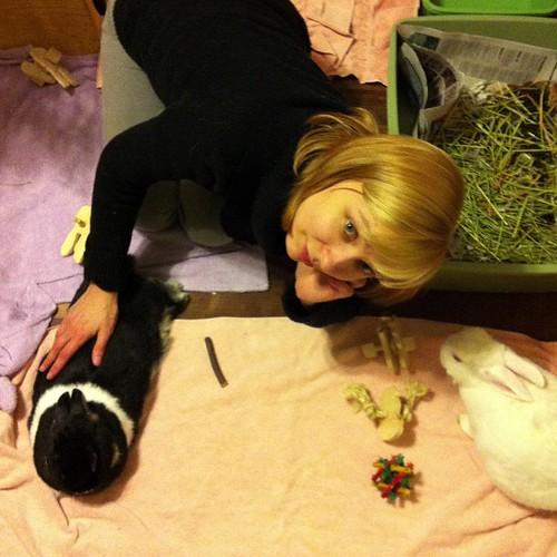 Pet party!!