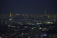 Tokyo Tower and Tokyo Skytree