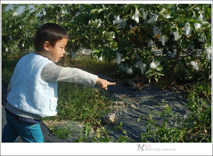 20121229-0922_D50_DSC_3812