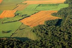 paysage Haute Saone  1479
