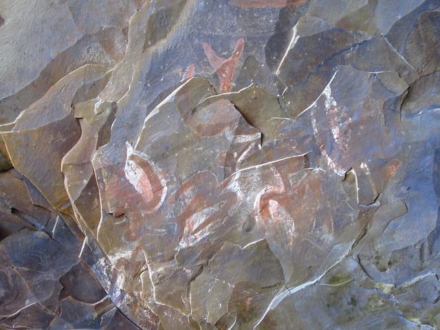 Rock Art of Ana Kai Tangata
