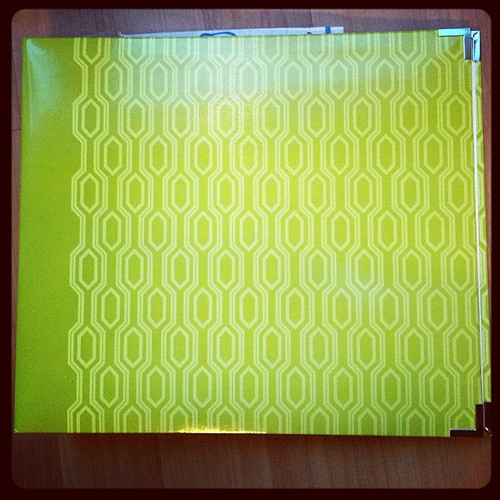 I got my binder today! I have a crazy combo going. Olive binder+ Seafoam kit + Studio Calico kit = my 2013 PL!! #projectlife