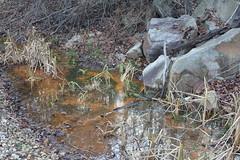 Seep Below Sediment Pond