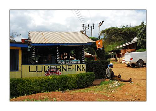 kilimanjaro - lucerne-inn