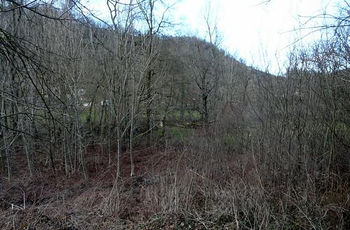 Terrain annexe, zone du bas