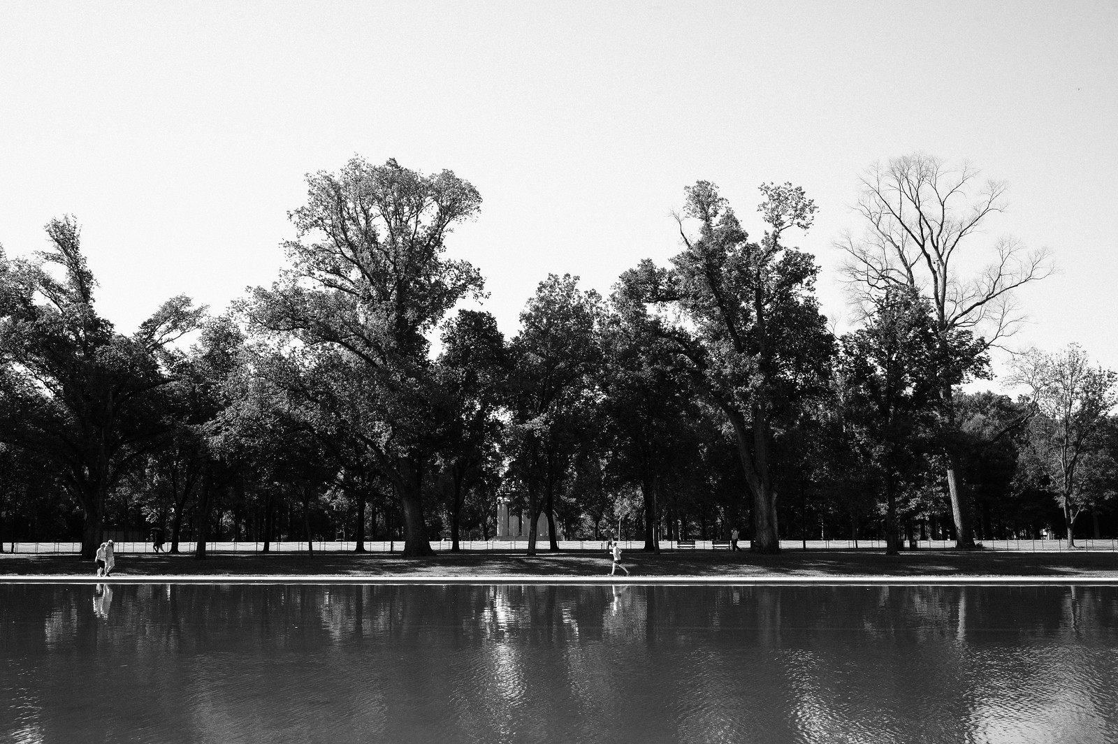 "Image titled ""Runner, National Mall."""
