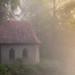 morning-fog by jan.scho