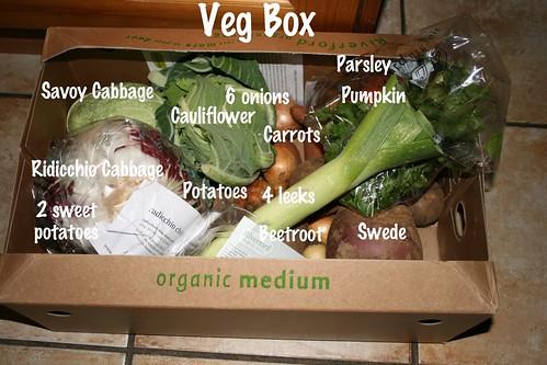 yeg box