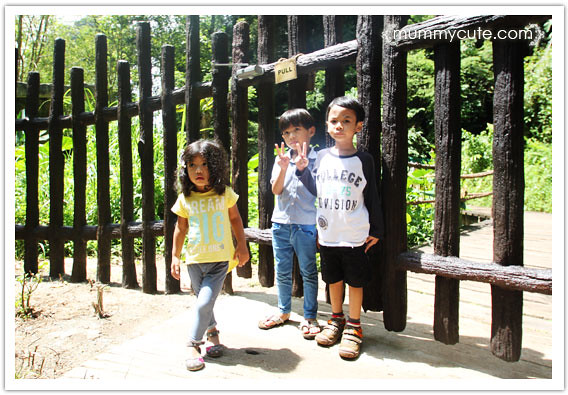 8286379486 37249950d7 z Bercuti di lost world of tambun 2 | Rainforest Trail