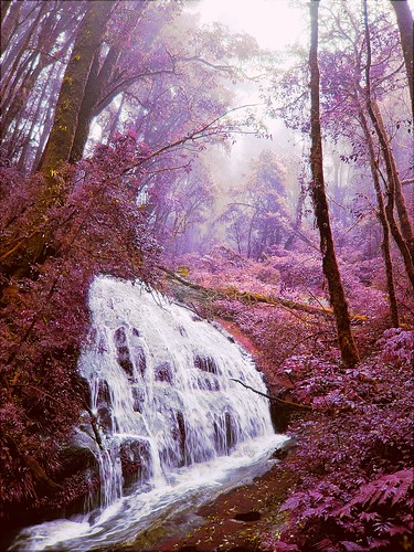 landscape ir 1 xpro fuji scene x infrared fujix xpro1 chiangmaitrip2010daythree