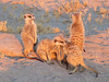 Sans Camp Safari In Makgadikgadi With AfricanMecca Safaris