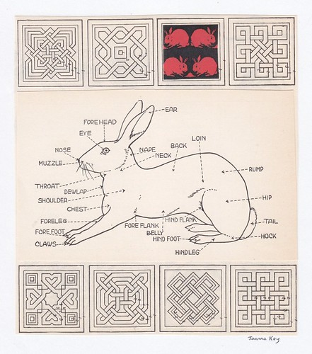 The Parts of a Rabbit by Joanna Key
