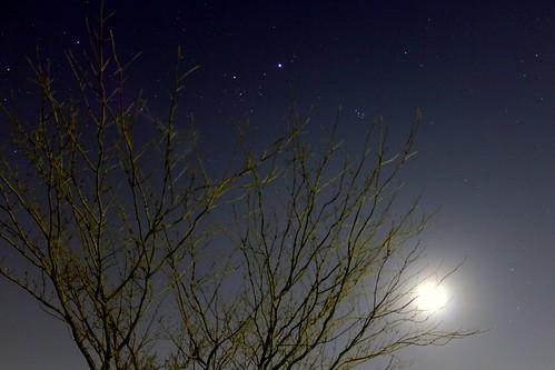 starry sky1