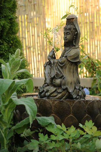 Quan Yin fountain, female bodhisattva, in a lotus basin, nectar, A Garden for the Buddha, bamboo fence, plants, Seattle, Washington, USA by Wonderlane