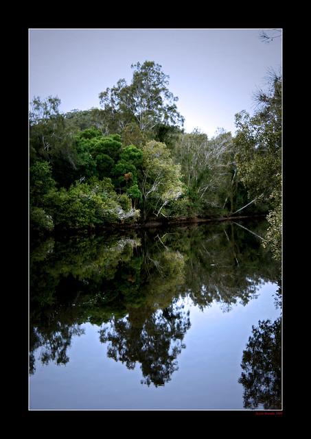 Macleay River