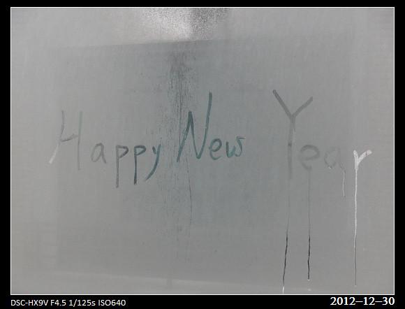 20121230_Happy New Year