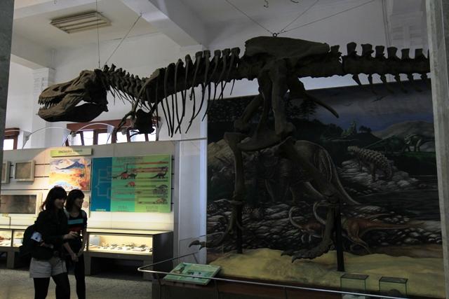 MUSEUM GEOLOGI 22