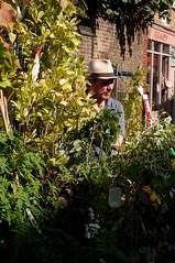 Flower vendor with hat