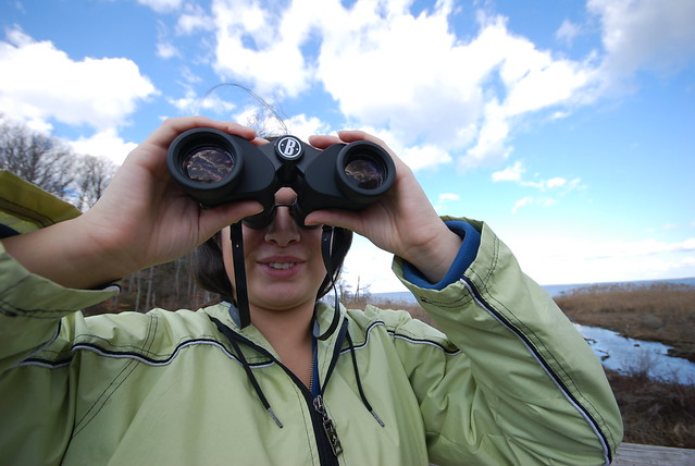 On the look-out for a real treasure hunt at Westmoreland State Park