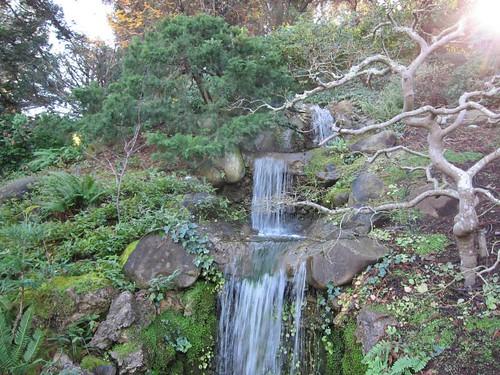 Hakone Japanese Gardens, Saratoga, CA, waterfall IMG_2435