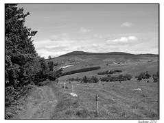 2011-06-11_Rechausseyre