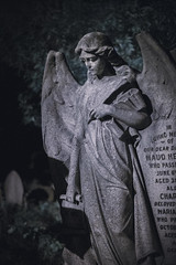 Angel in Infrared