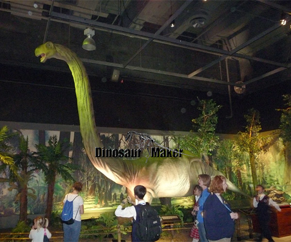 Animatronic Dinosaur Mamenchisaurus Exhibits