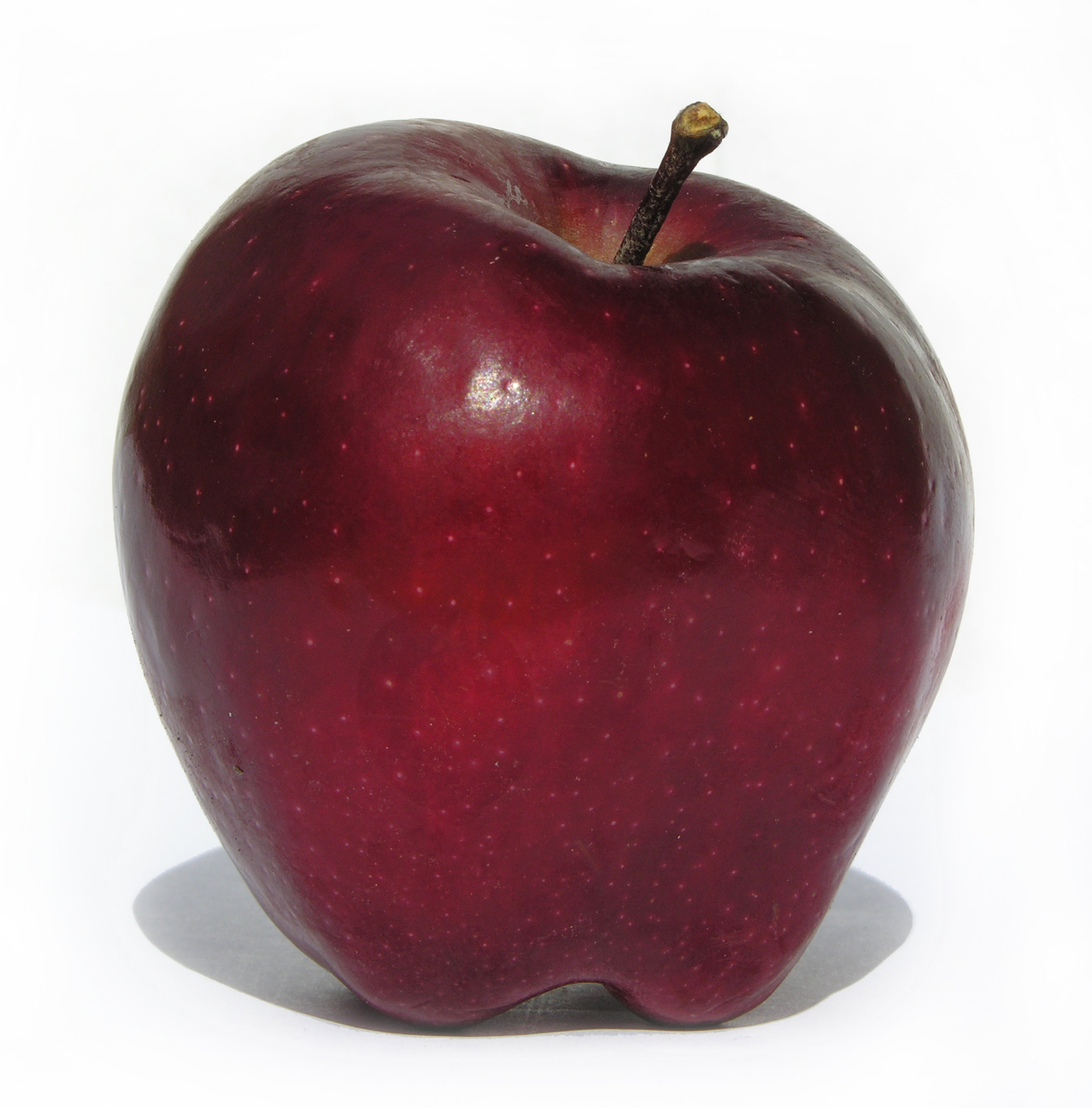 "CPS Lesson #1  - ""Red Delicious"" Photo Referece"