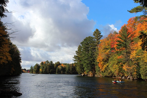 autumn lake ontario canada fall canoe minden