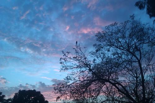 sky in blues!