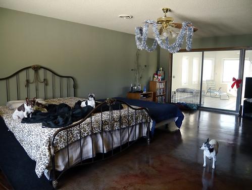 2012-12-21 - FSMas Decorations - 0048