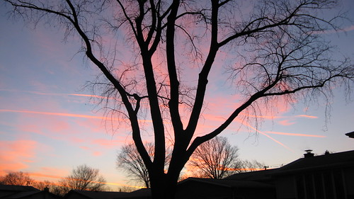 Morning sunrise.  Mount Prospect Illinois.  December 2012. by Eddie from Chicago