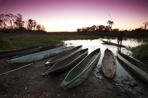 africa travel sunset boat traditional delta canoe botswana okavango okavangodelta